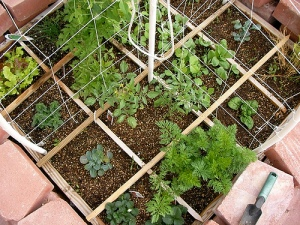 sq-ft-garden